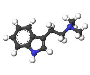 Dimethyltryptamine molecule