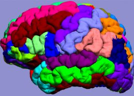 Major cause of dementia discovered in the brain