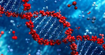 Study finds your genes have a large influence your sense of duty to vote
