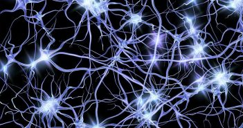 Antisocial personality disorder linked to impairments of white matter microstructure