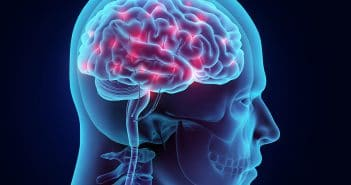 Neuroimaging study shows brain activity corresponds to men's self-stated sexual orientations