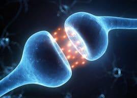Study finds LSD produces dreamlike states in awake humans by stimulating serotonin receptors