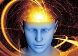 Treatment utilizing psychedelic drug ibogaine significantly reduces opioid withdrawal and cravings