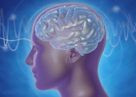 Classical and Jazz musicians show different brain responses to unexpected events, study finds