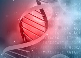 Large genetic study links tendency to undervalue future rewards with ADHD and obesity