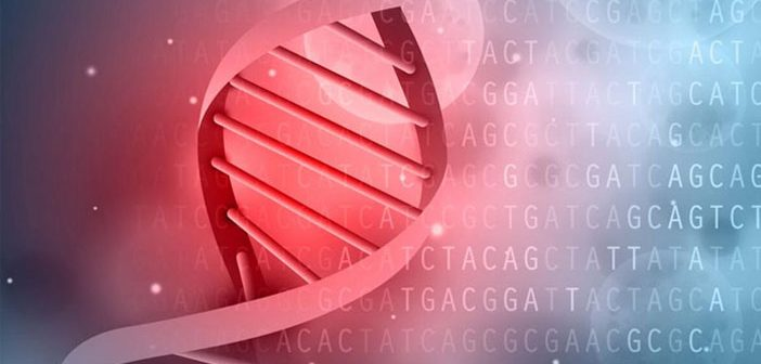 Study: Genes linked to lower educational attainment also predict criminal behavior