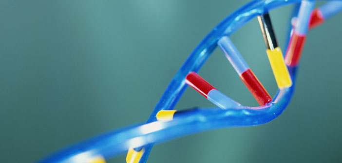 Researchers identify new genetic cause of epilepsy