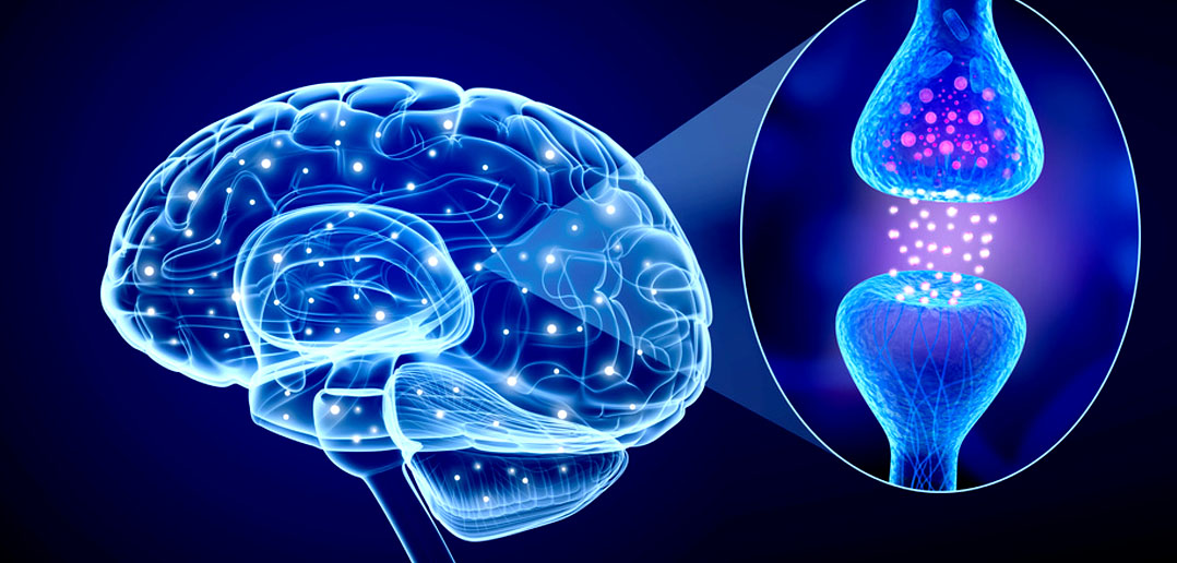 Researchers review progress of treating glutamate signalling in depression