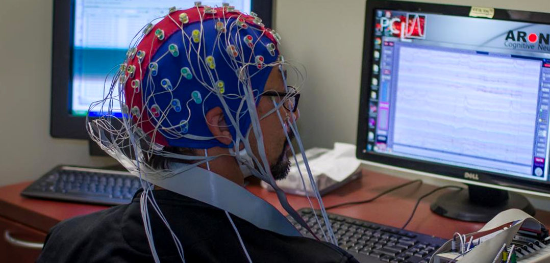 eeg recordings prove learning foreign languages can sharpen our minds