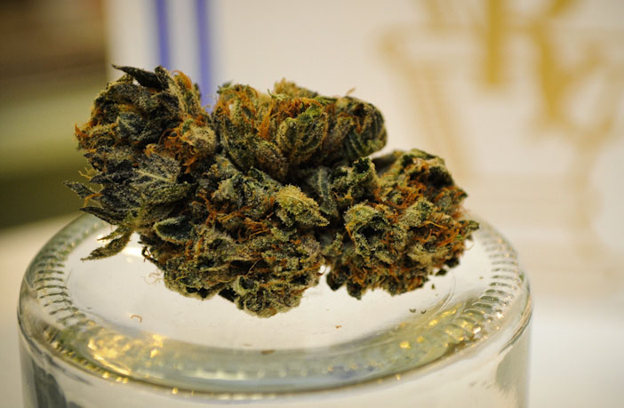 Cannabidiol has therapeutic potential in the treatment of anxiety and substance abuse disorders