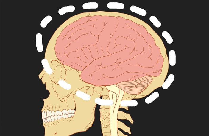 Callous and unemotional traits linked to brain structure in boys but not in girls