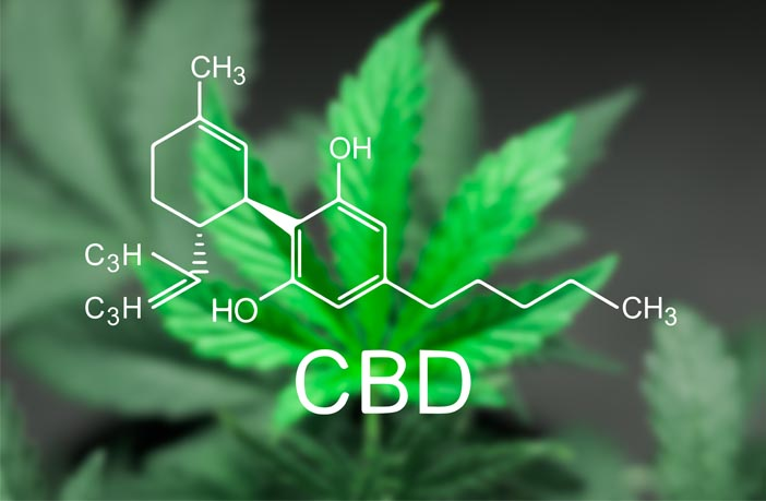 Cannabidiol induces a rapid and long-lasting antidepressant effect in rodent model of depression
